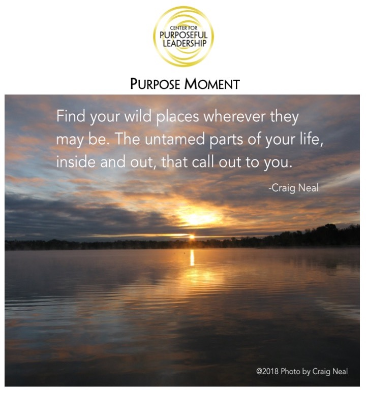 PurposeMoment-111218.png