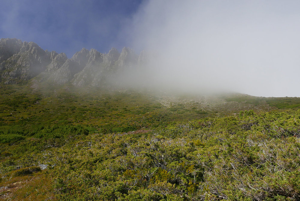 Clouds covering the Cradle Mountain Summit path