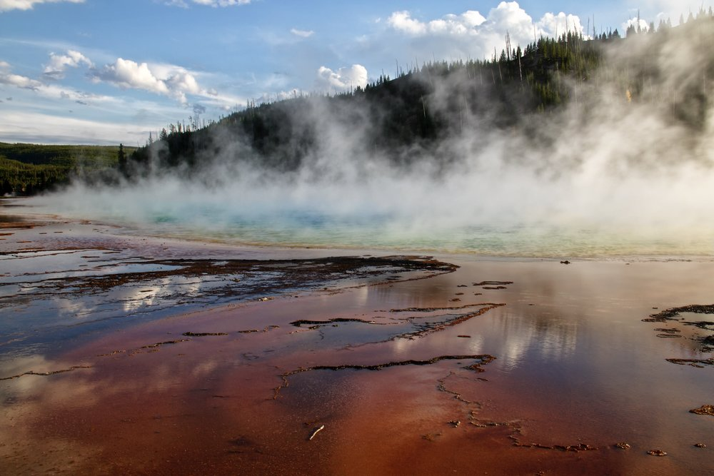 Grand Prismatic Spring in Yellowstone - Nicole Atkins