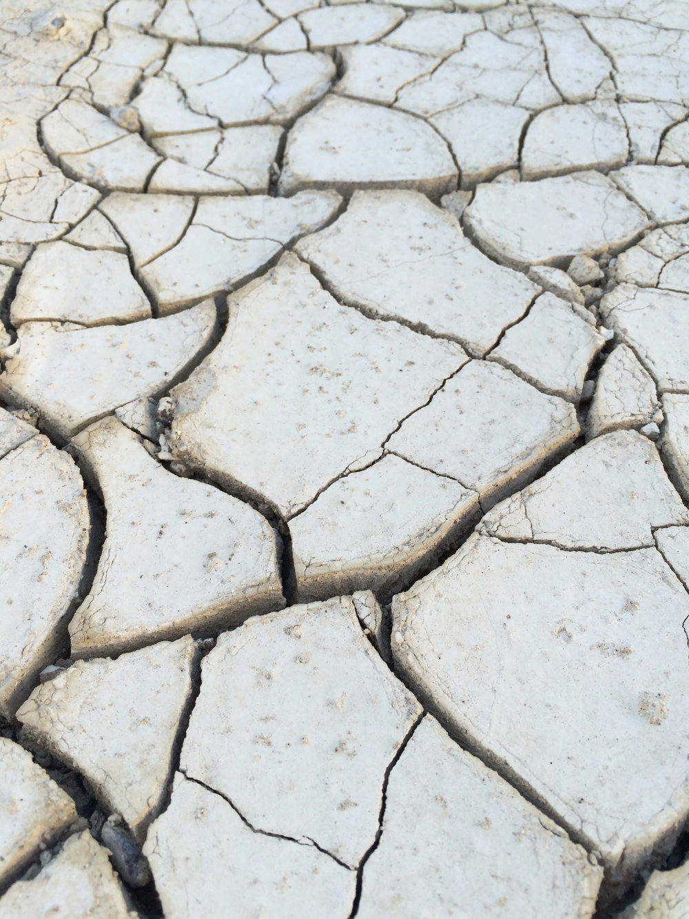Cracked Desert Earth - ©️ Nicole Atkins