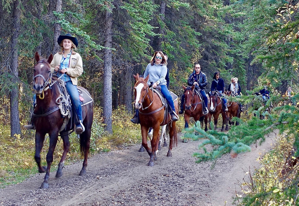 Horseback Riders on the Trail
