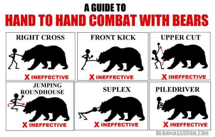 Hand-to-hand Combat with Bear - ©️  Bearmageddon