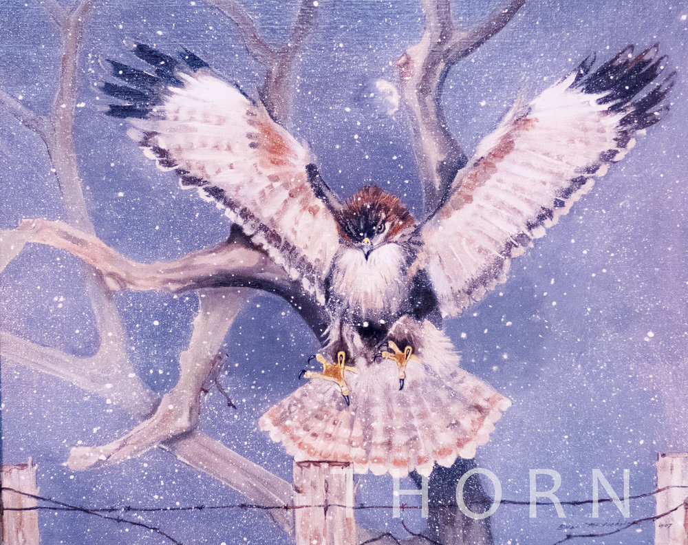 """A STORMY LANDING    Click on image for size and material options.   Prints Available From $27 - $345  Original 20""""w x 16 """"h  Artist: Brian McNicholas"""