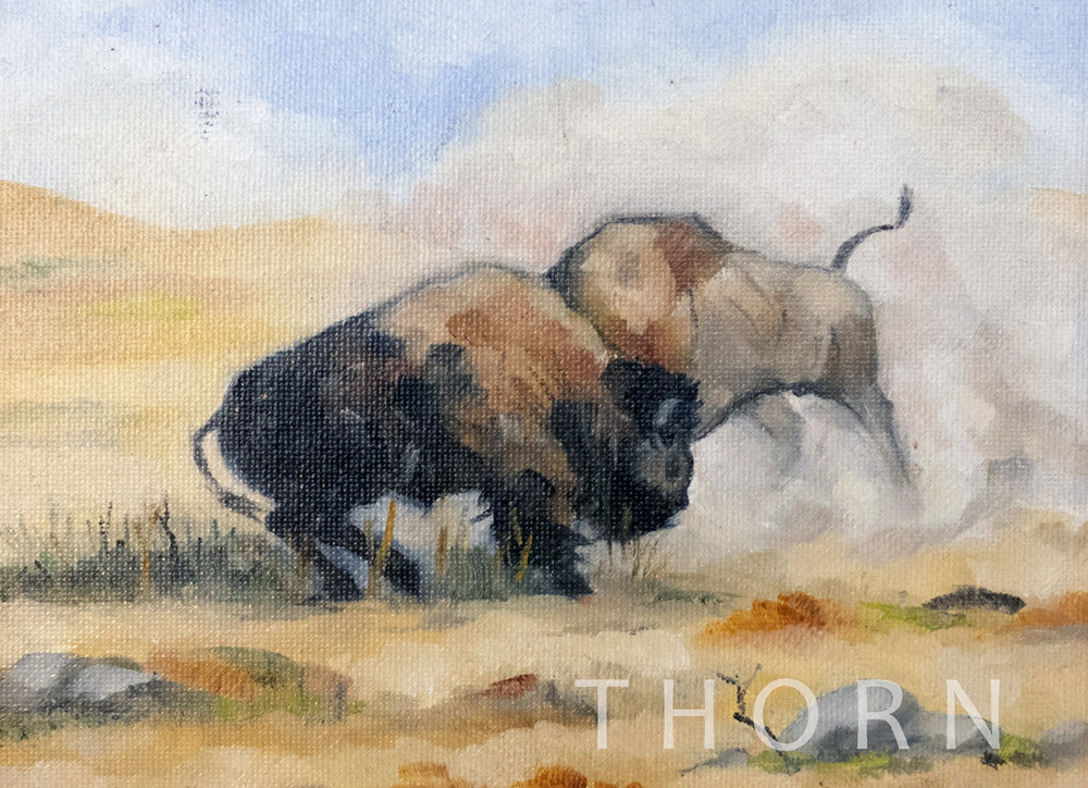 """DUEL ON THE MISSION BISON RANGE    Click on image for size and material options.   Prints Available From $27 - $195  Acrylic 2006  Original 8""""w x 6""""h  Artist: Brian McNicholas"""