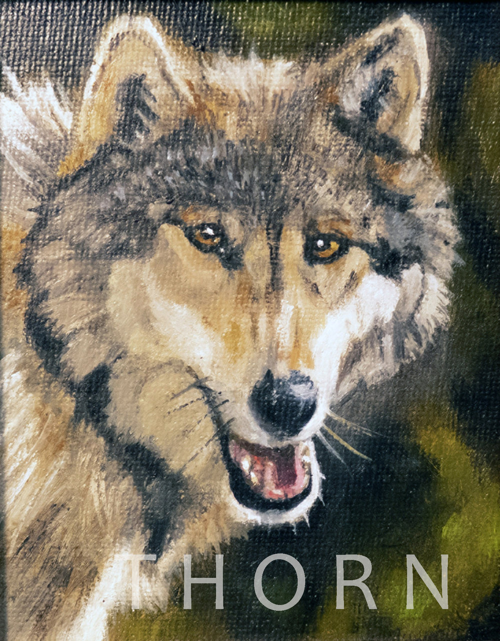 """WOLF    Click on image for size and material options.   Prints Available From $27 - $125  Original 4""""w x 4.5""""h  Artist: Brian McNicholas"""