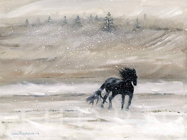 """HORSE IN A STORM    Click on image for size and material options.   Prints Available From $27 - $340  Oil   2009  Original 14""""w x 11""""h  Artist: Brian McNicholas"""