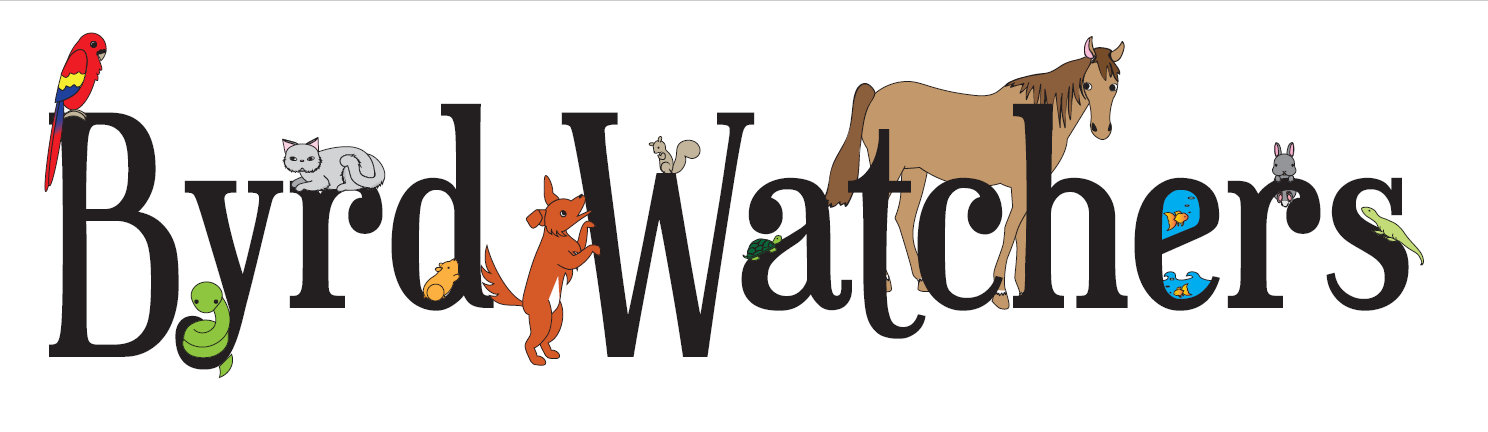 Byrd Watchers Petsitting LLC