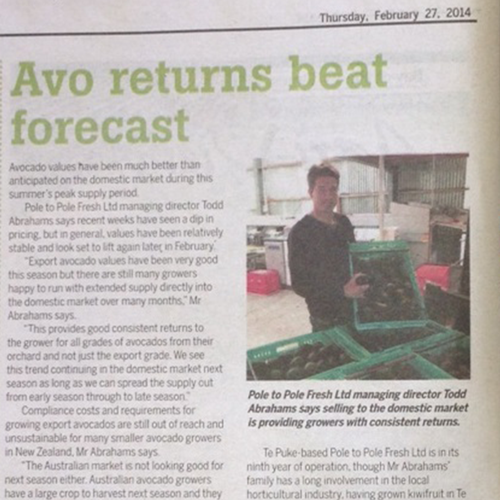 Avo-returns-beat-forecast