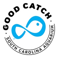 GoodCatchLogo2Color@0,25x.jpg