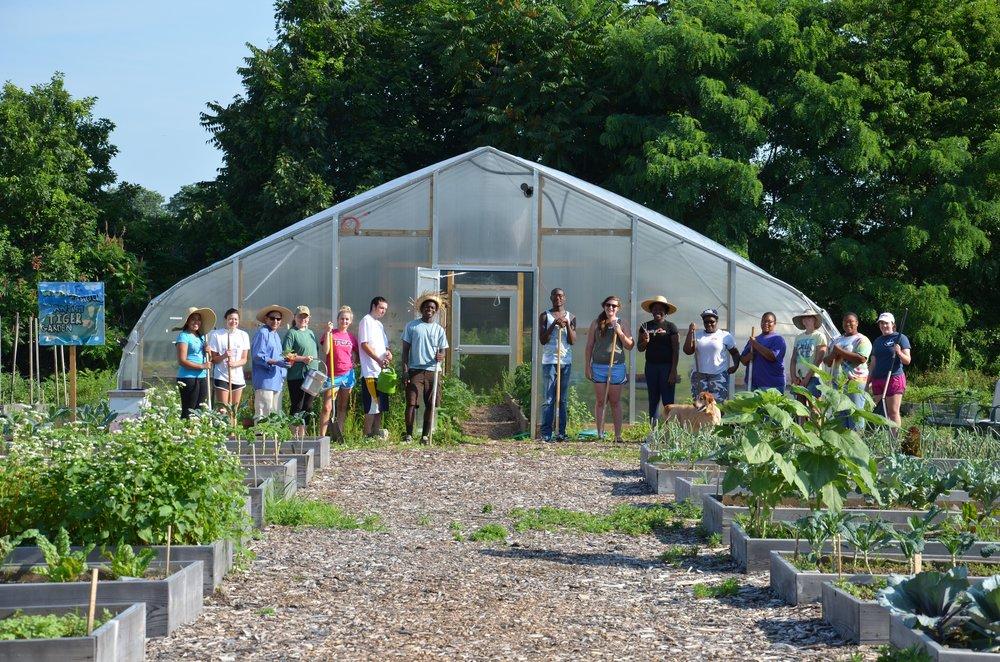 Greenhouse - old.jpg