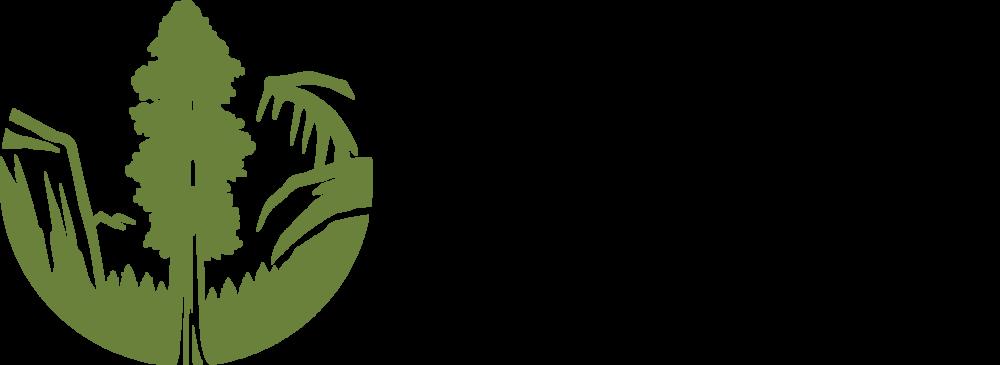SC-Logo_Horiz-Web-Green.png