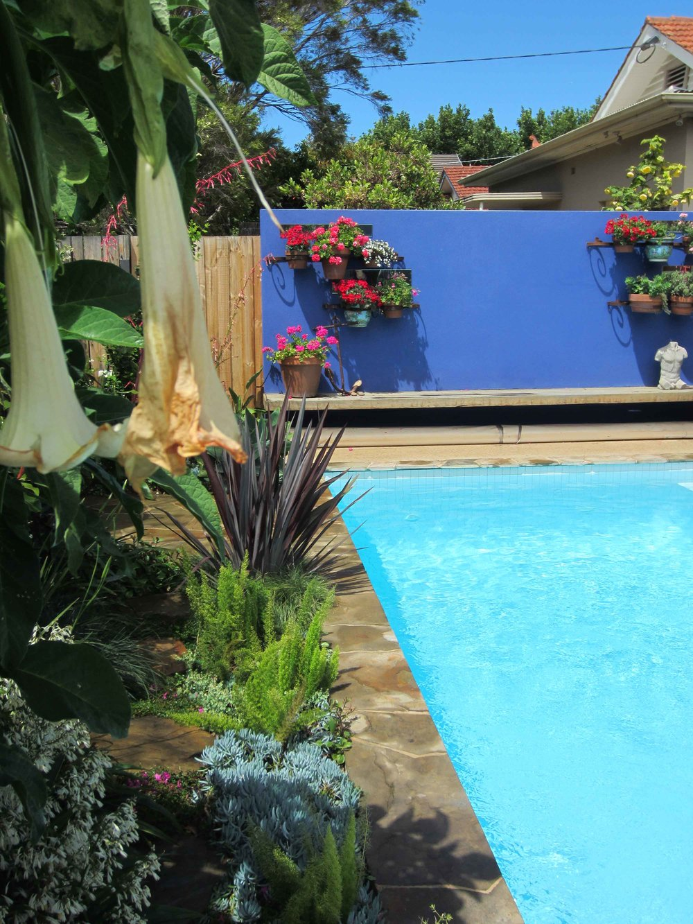 Kate Seddon, Elwood Garden