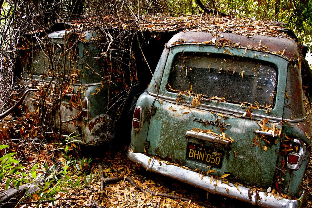 field cars-5.jpg