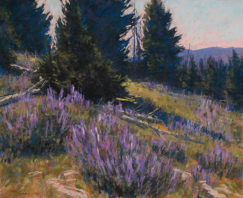 Big Horn Mt Lupine-SOLD