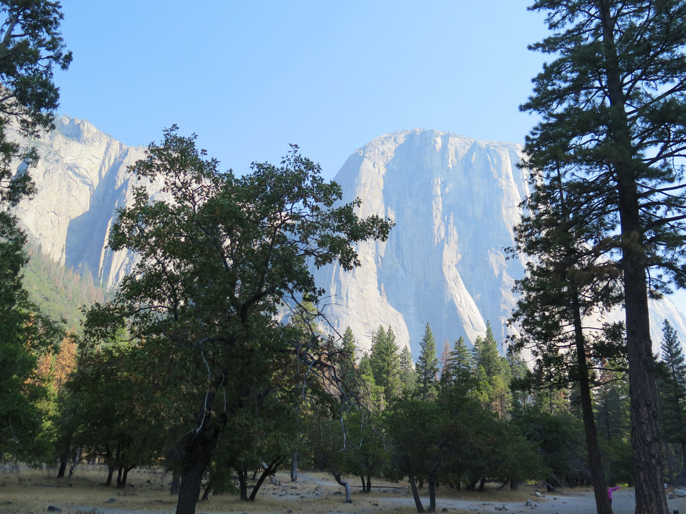 El Capitan from Yosemite Valley