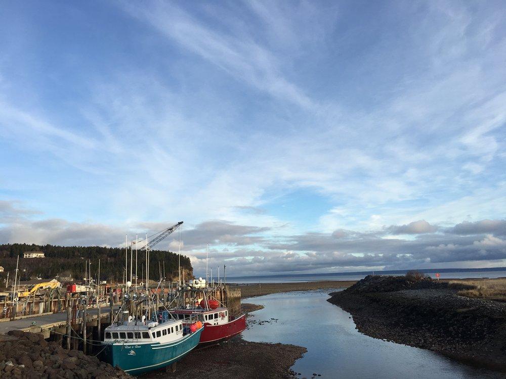 Bay of Fundy Tides