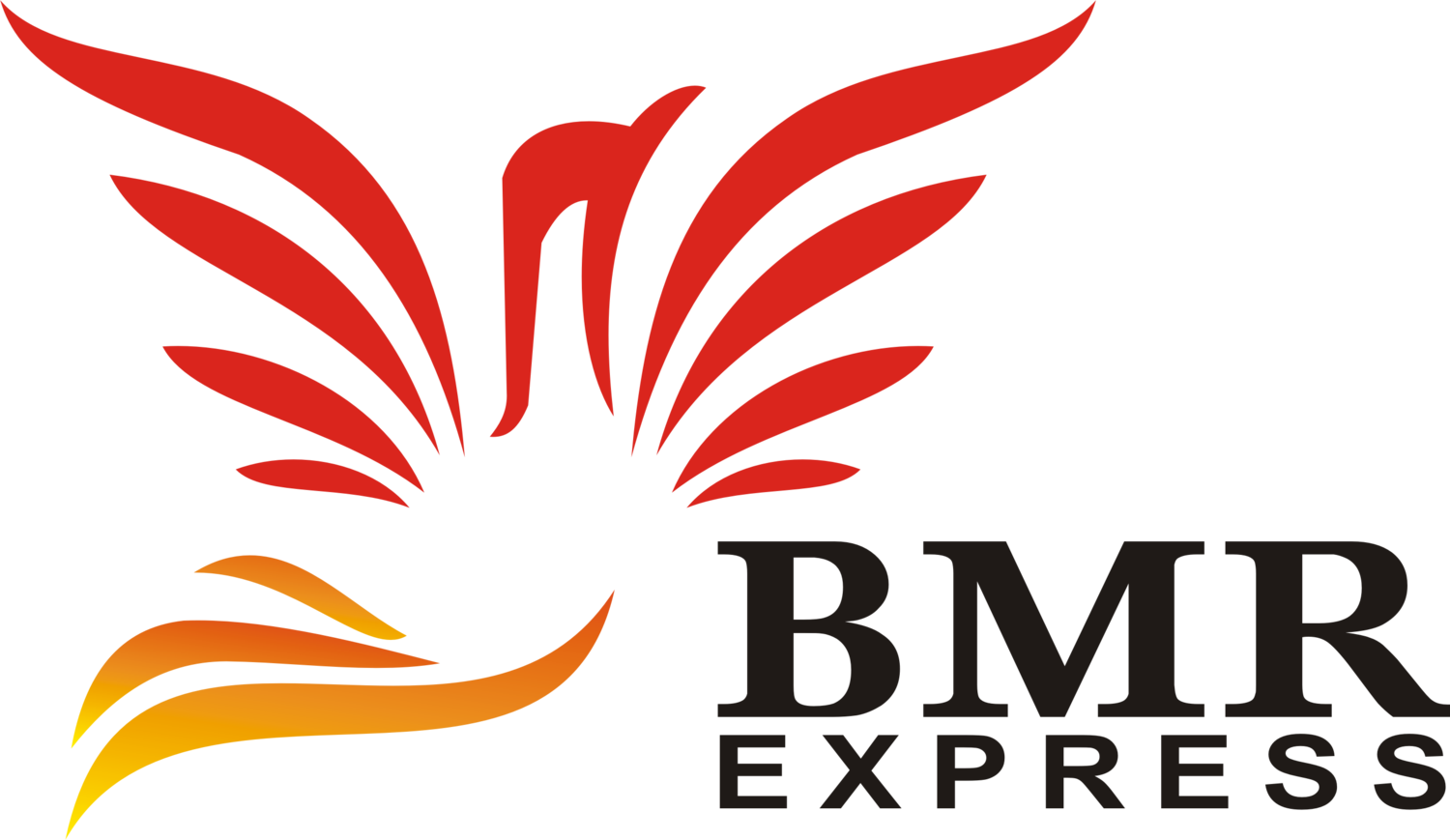 BMR Express - Aviation Is Our Passion