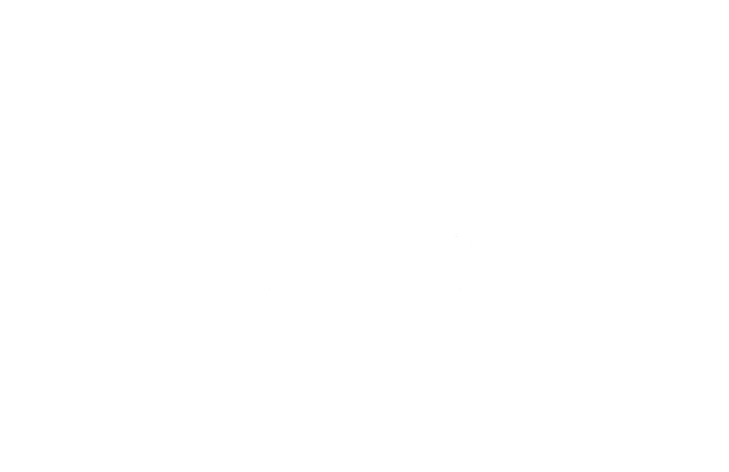 The Flight Center