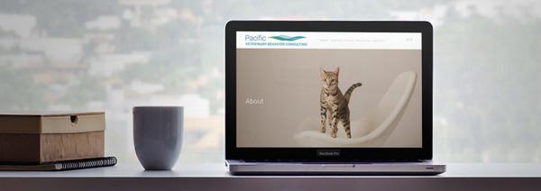 Website Design - Modern. Beautiful, Responsive