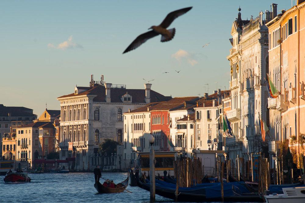 Die venezianische Paläste am Ufer des Canal Grande
