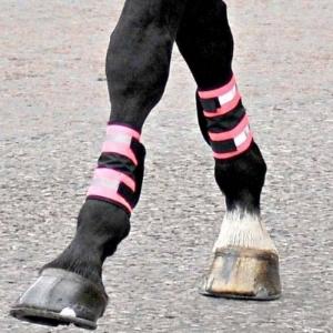 leg boots.jpg