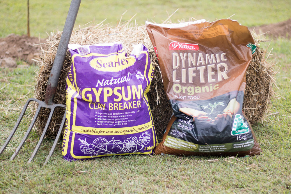 I used gypsum to break the clay and Dynamic Lifter for fertiliser.