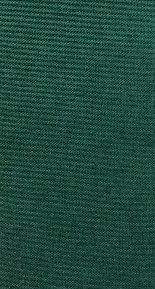 Iris Evergreen