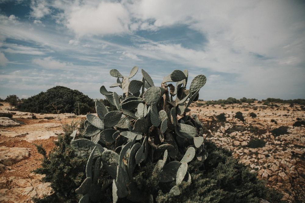 Boda_Formentera-7.jpg