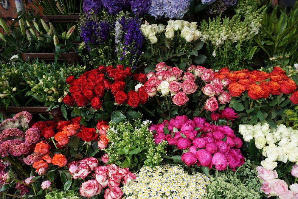 The Flower Yard on Sydney Street