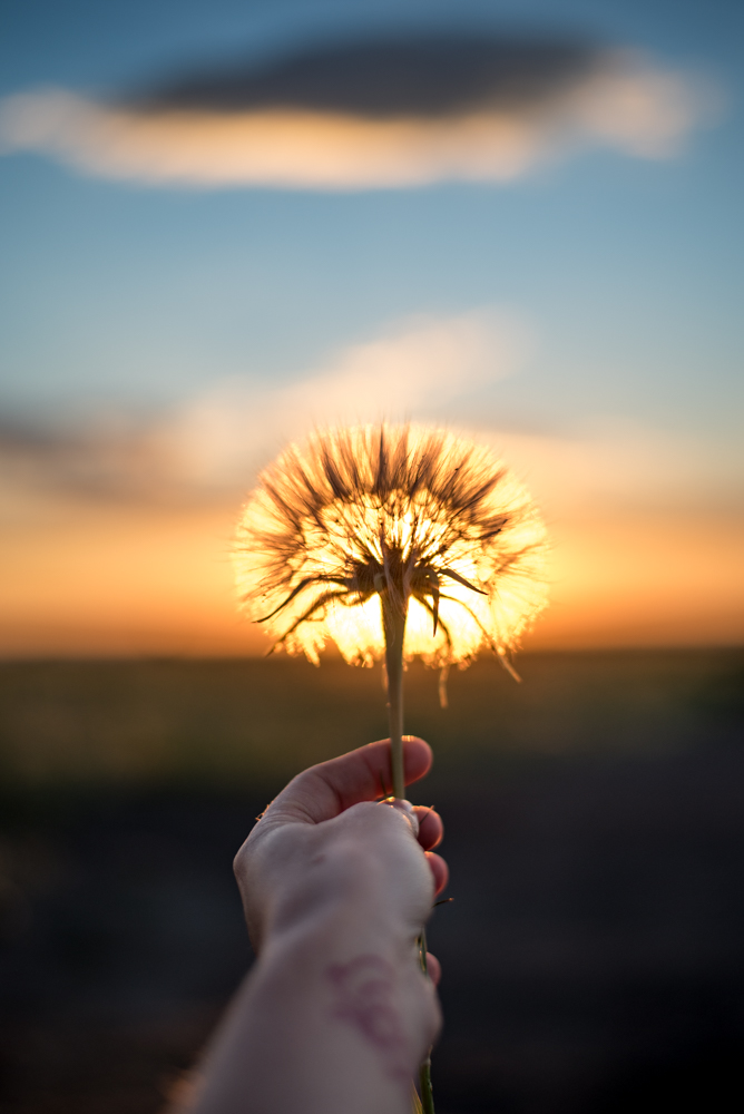Making a wish for a productive summer and hoping to reach some serious goals.