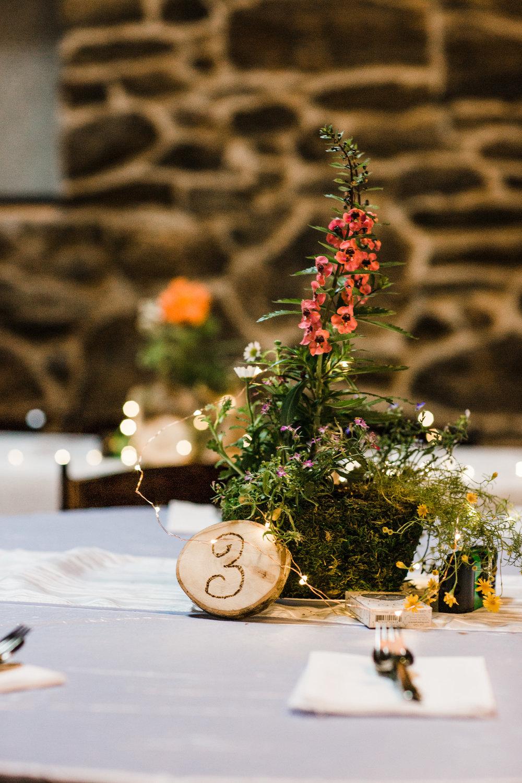 Colorado-mountain-wedding--121.jpg