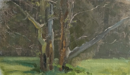 Sketch one. All mine, but he boosted the saturation in the trunks (reflected light) and added a couple of dark marks to the base of the trees. Mid-afternoon light from directly above (pretty much).