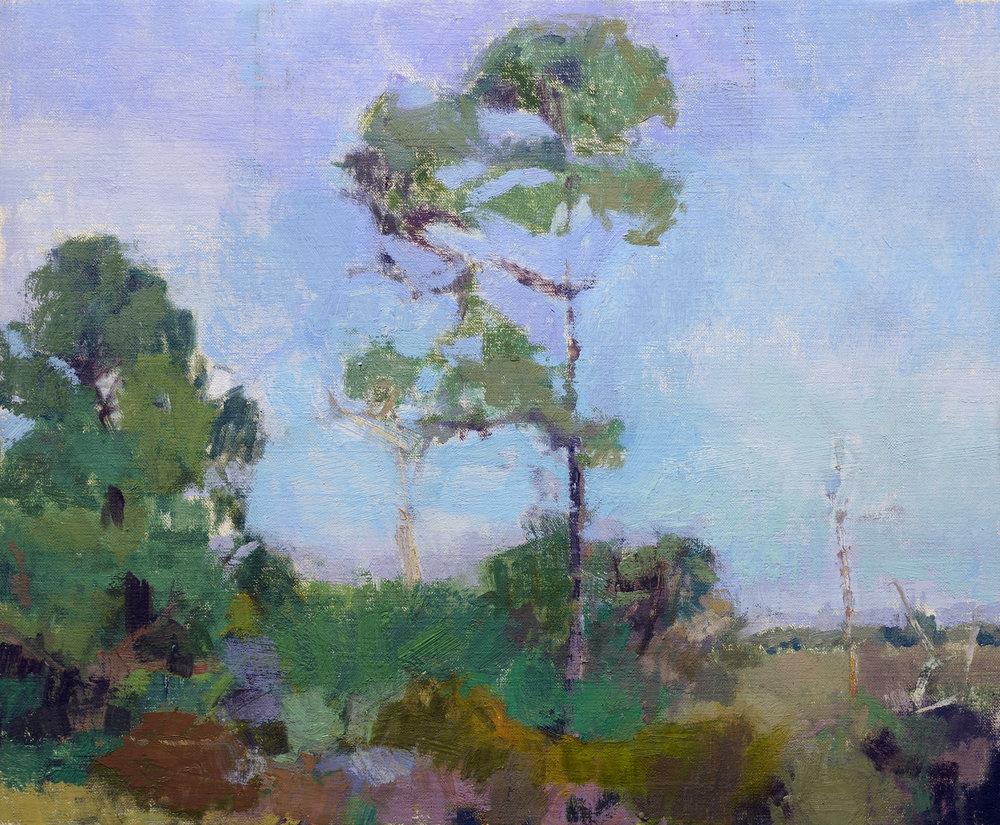 Lone Pine