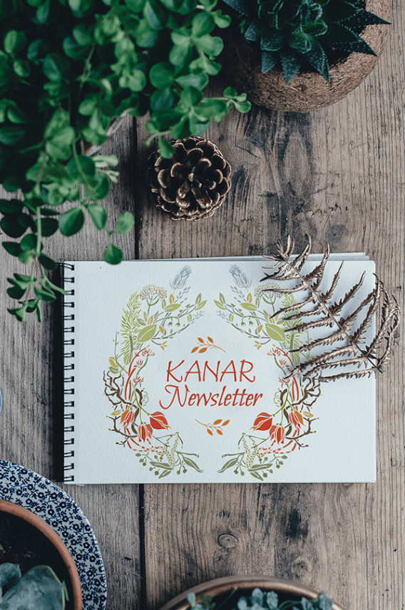 Kanar Newsletter.png