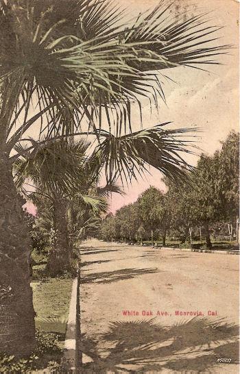 1908_white_ave.jpg