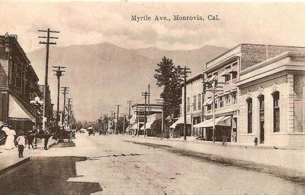 1915_m_myrtle_col.jpg