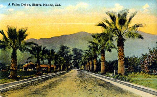 1910_palm_drive.jpg