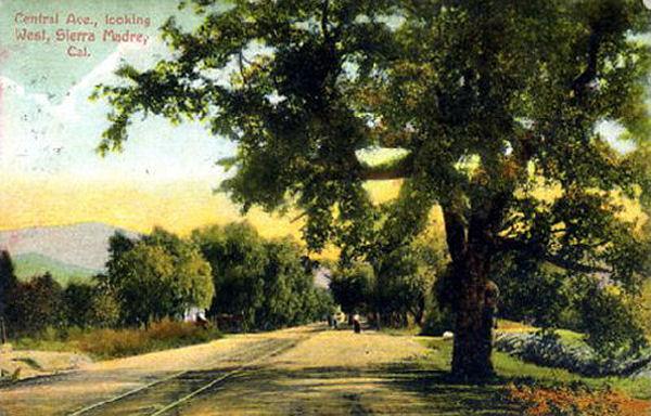 1915_sm_central.jpg