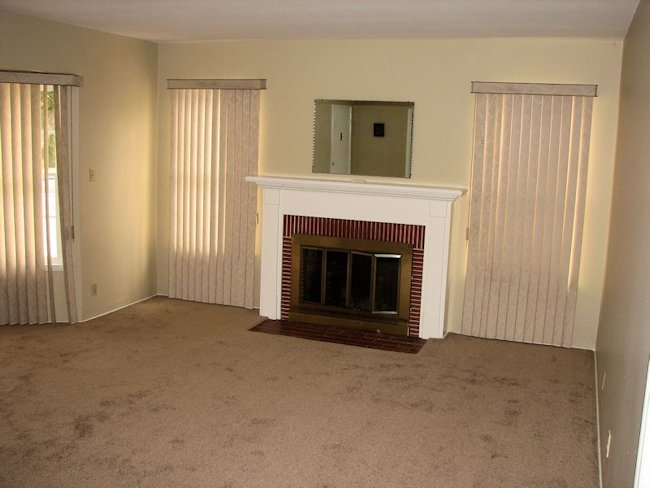 193_virginia_fireplace.jpg