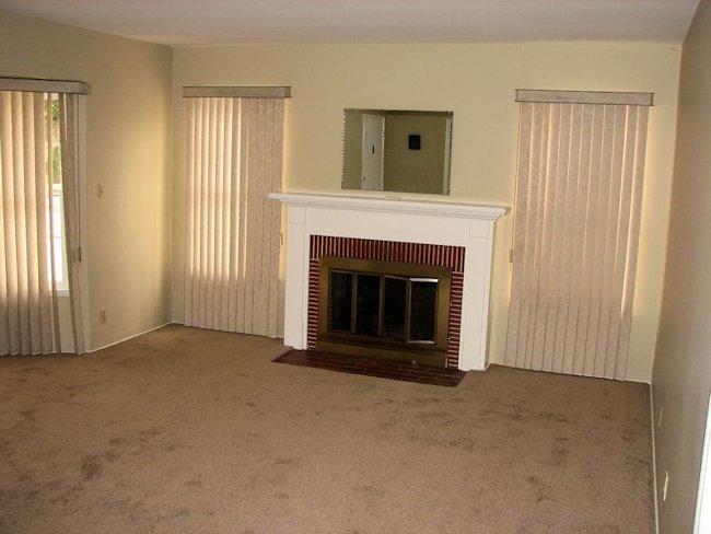 193_virginia_fireplace.jpg