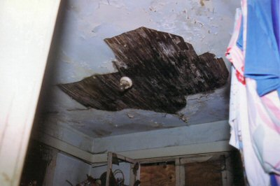 1954_contemp_ceiling_before.jpg