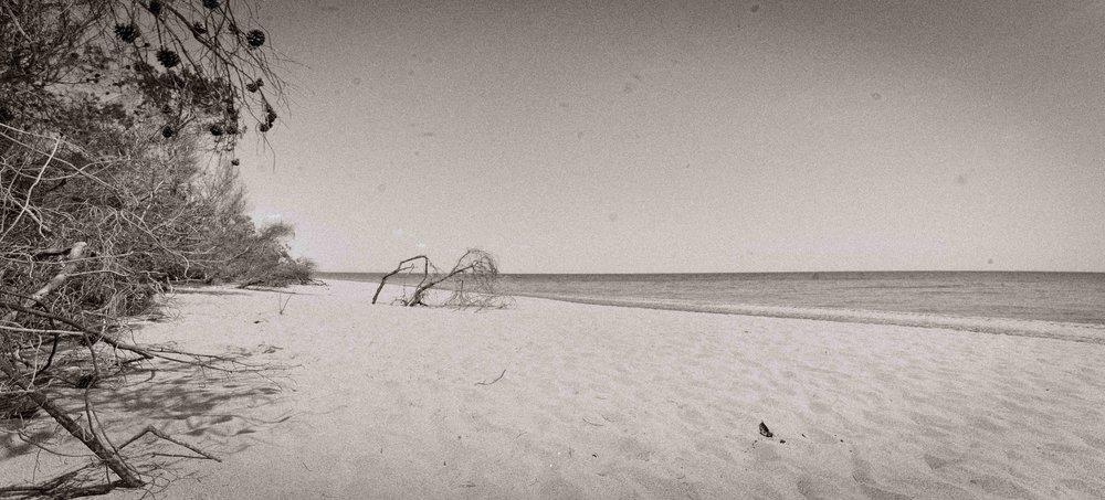 DSC_5500 basilicata beach BN BR.jpg