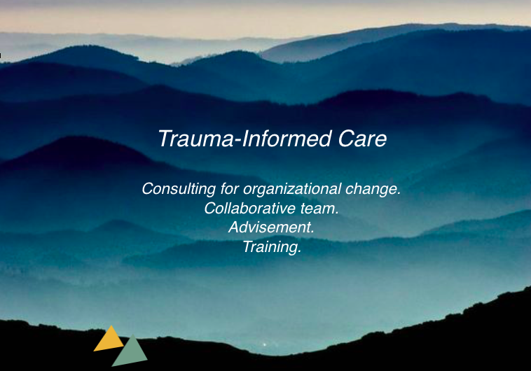 Guidance to transform your organization to a trauma-informed care model or trauma-informed school. We aid in mapping and providing first steps toward total organizational transformation.