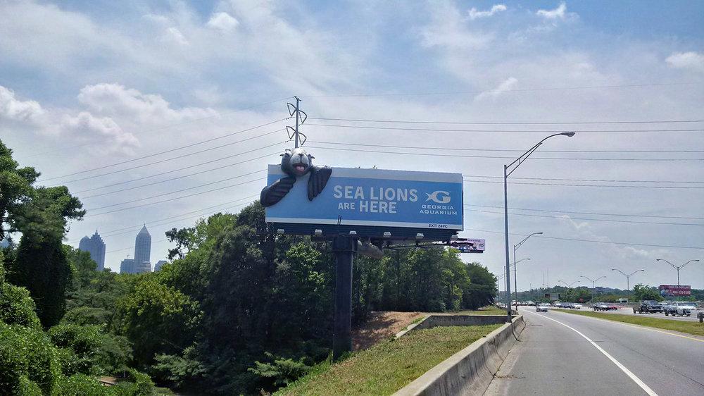 Soft Signs 3D Georgia Aquarium Sea Lion