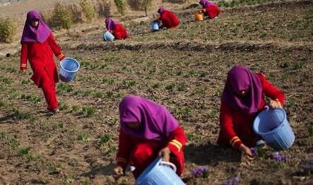 woman labour1