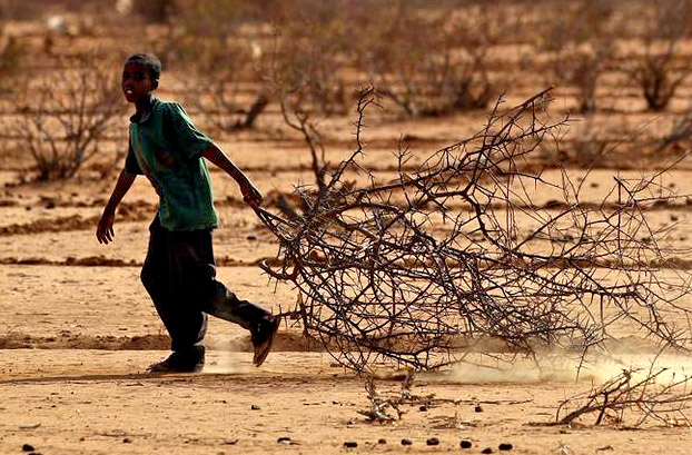 A SOMALIAN BOY COLLECTING FIREWOOD; LET'S BE PRAYING HE FINDS HIS WAY TO THE TREE OF LIFE [GETTY IMAGES]