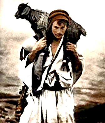 shepherd carrying sheep4.jpg