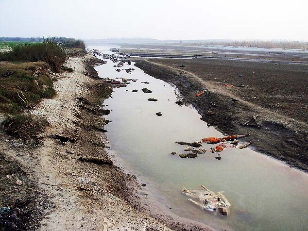 Dead bodies floating in Ganges River near Pariyar (Getty Images)
