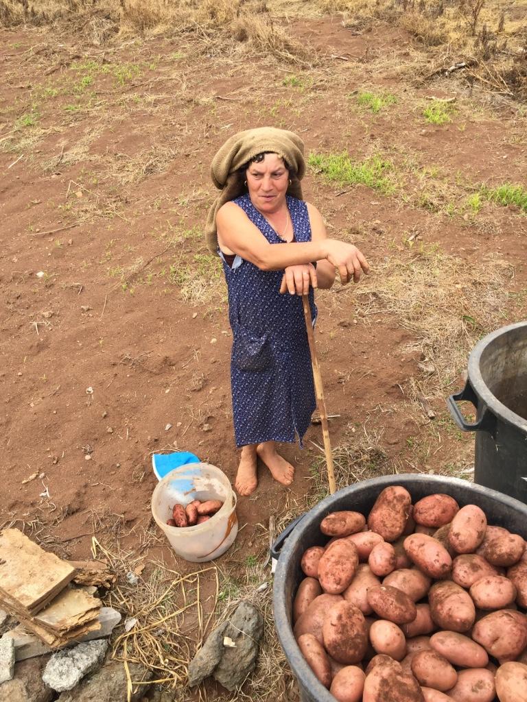 Agricultora da Ilha da Madeira