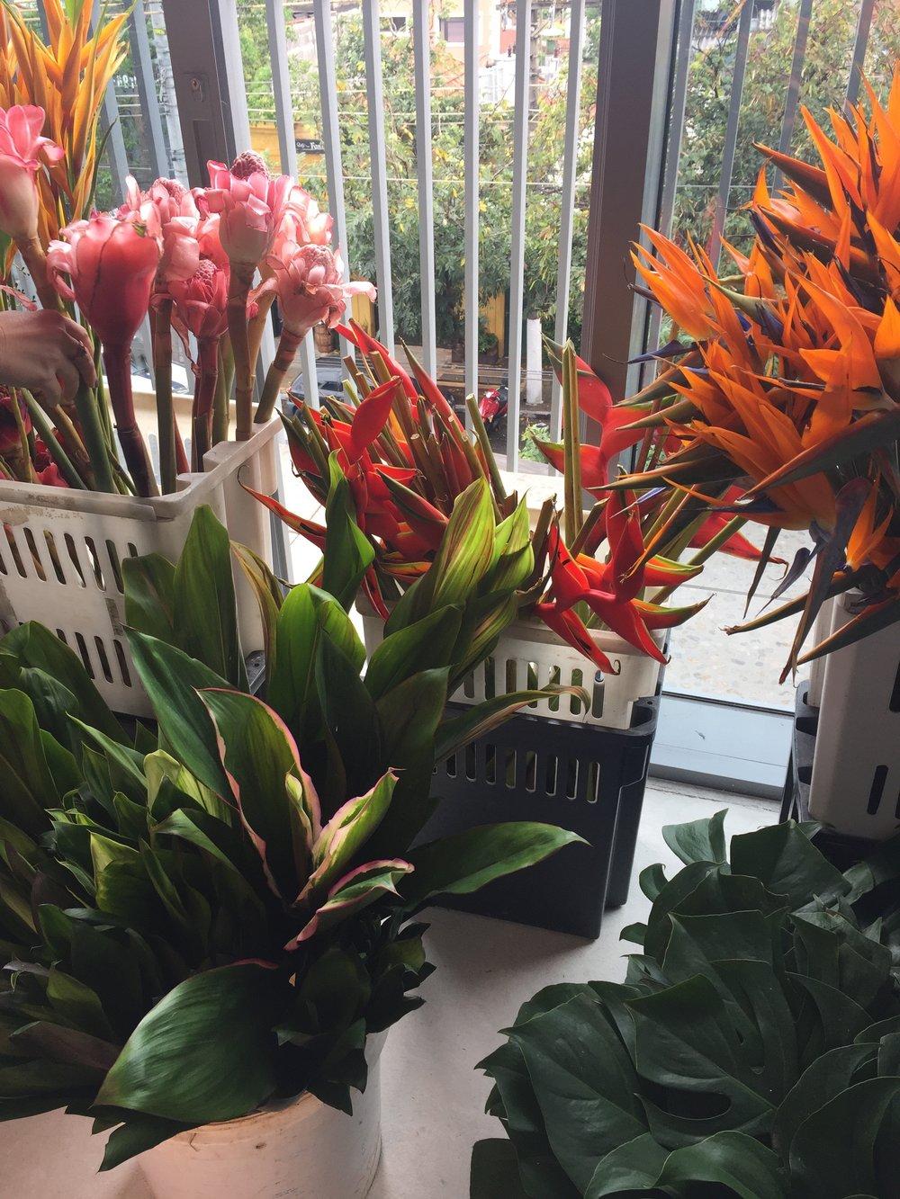 Flores tropicais devem ser banhadas antes de serem utilizadas nos arranjos. E o caule deve ser cortado dentro d'água para que o ar saia e a água entre.